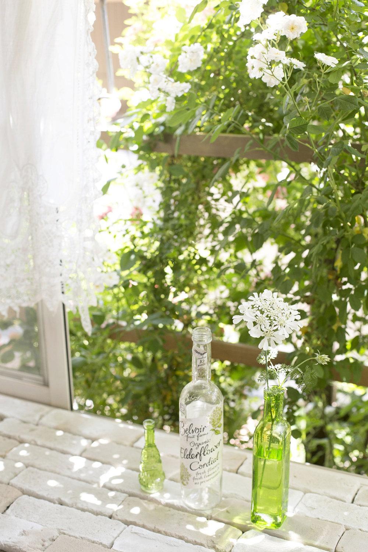 gardenfl003.jpg