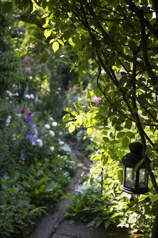 gardenfl001.jpg