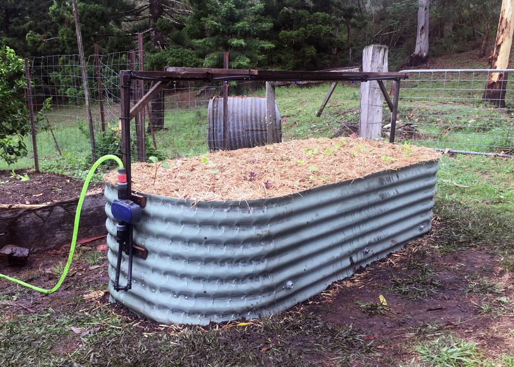 IMG_0853-Wombat-Solar-Irrigation.jpg
