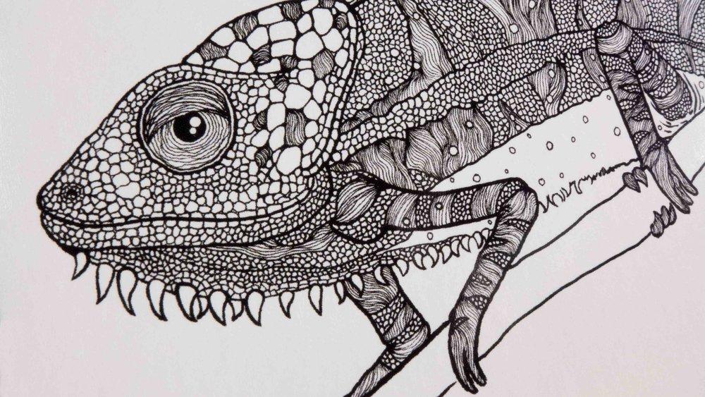 Sarah Mae lizard.jpg