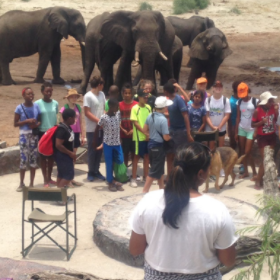 Educate The Community On Conservation and Eco Tourism