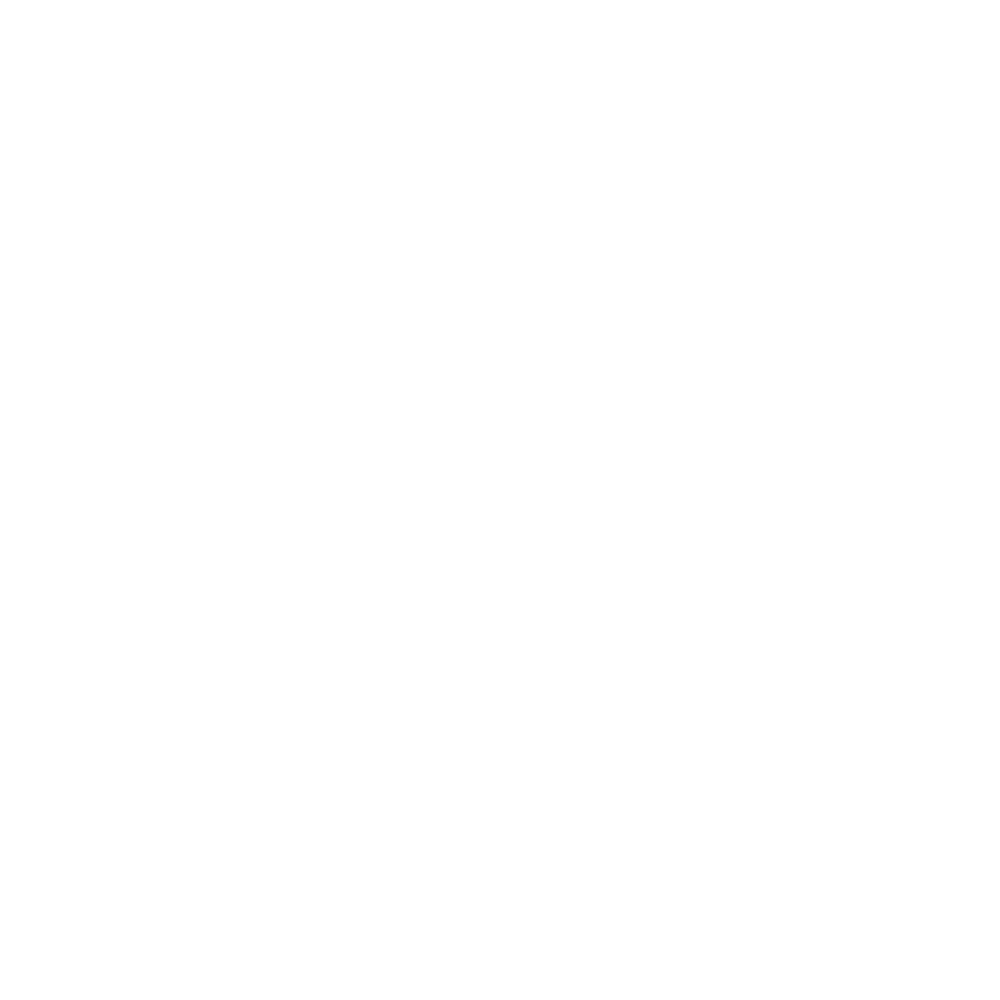 electric feel logo.png