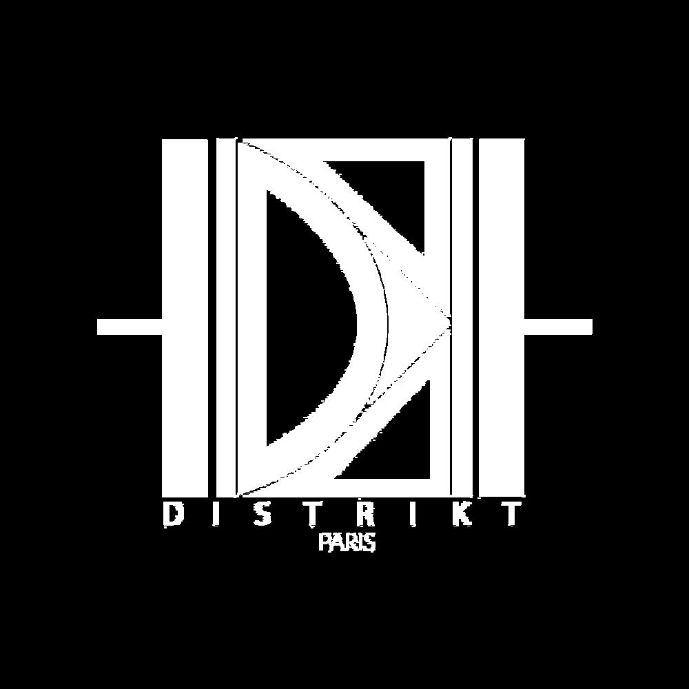 logo distikt.png
