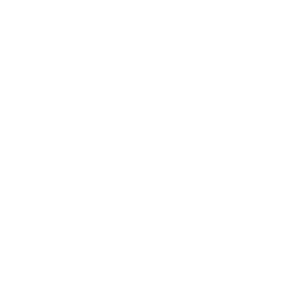 logo subtyl.png