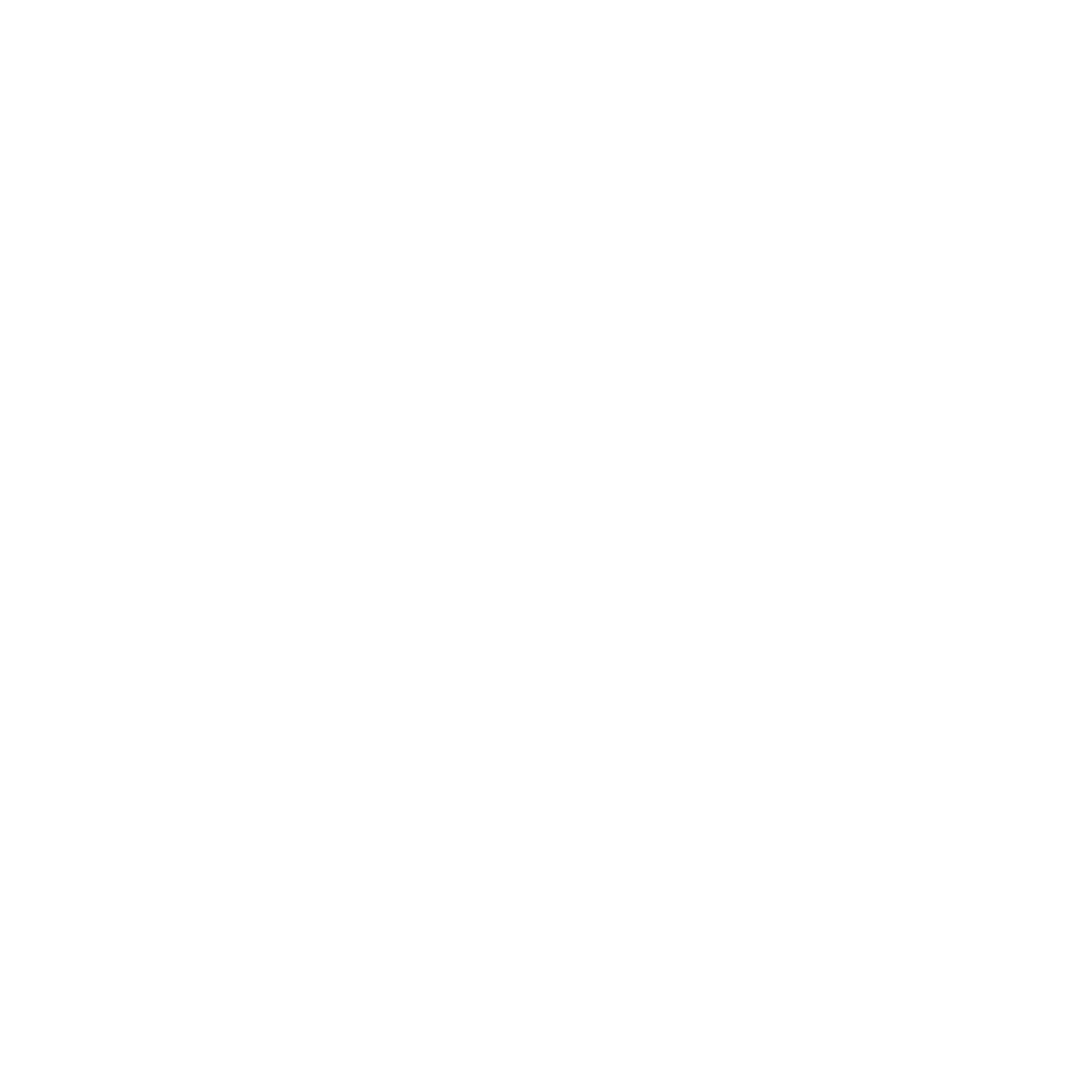 logo supersonic.png