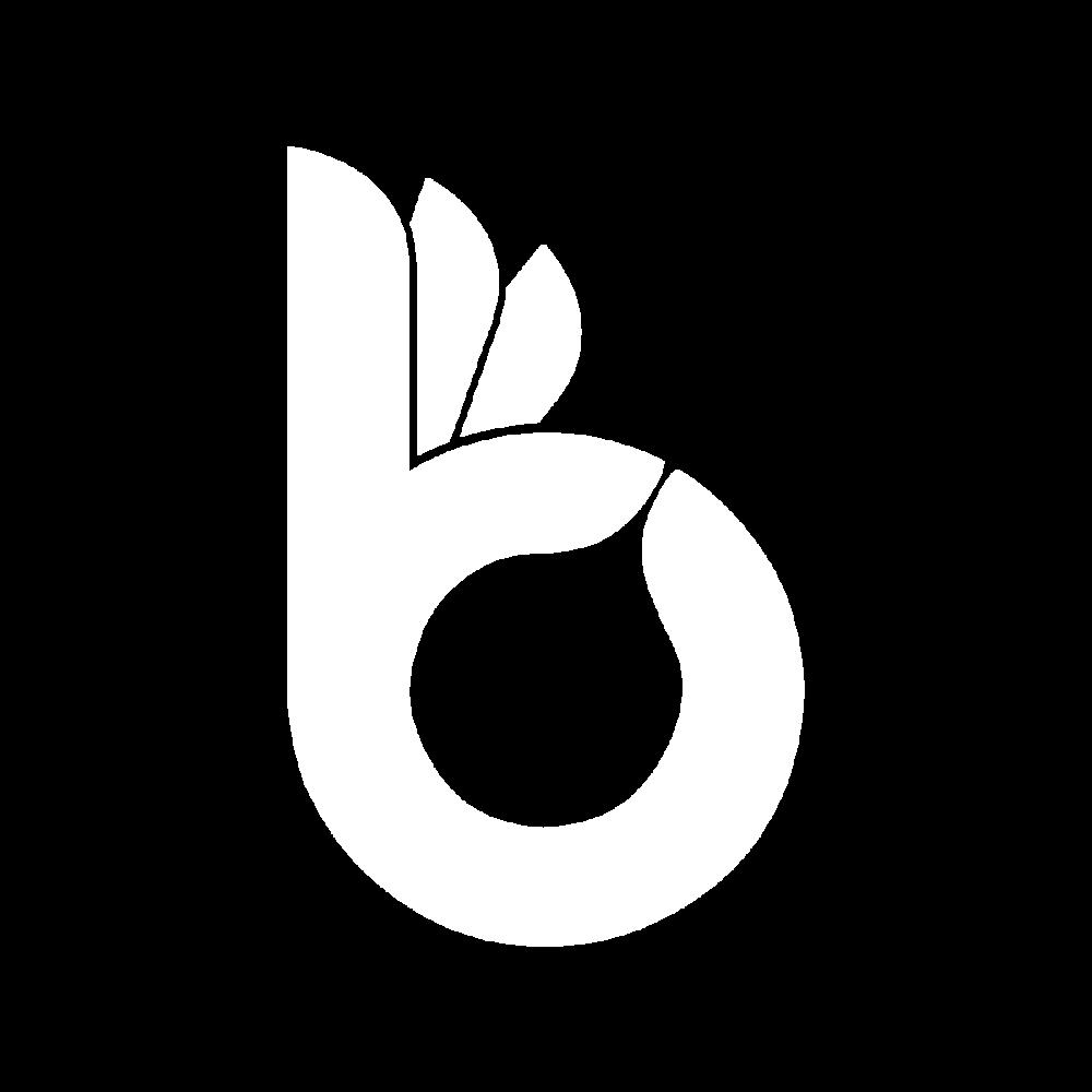 logo bonanza.png