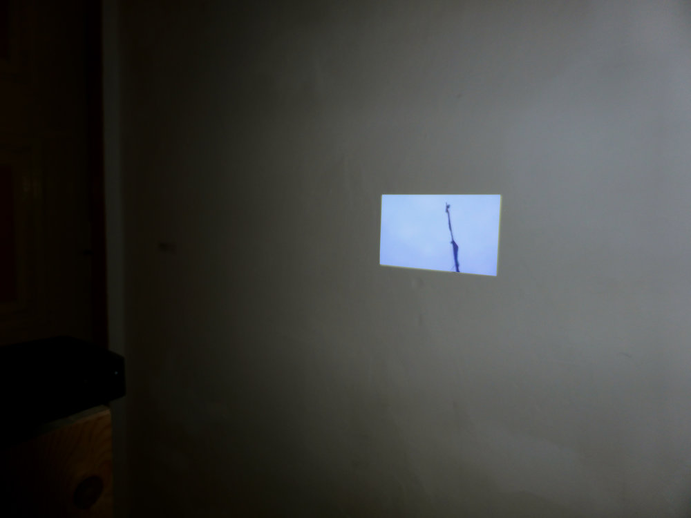 Installation-View.jpg
