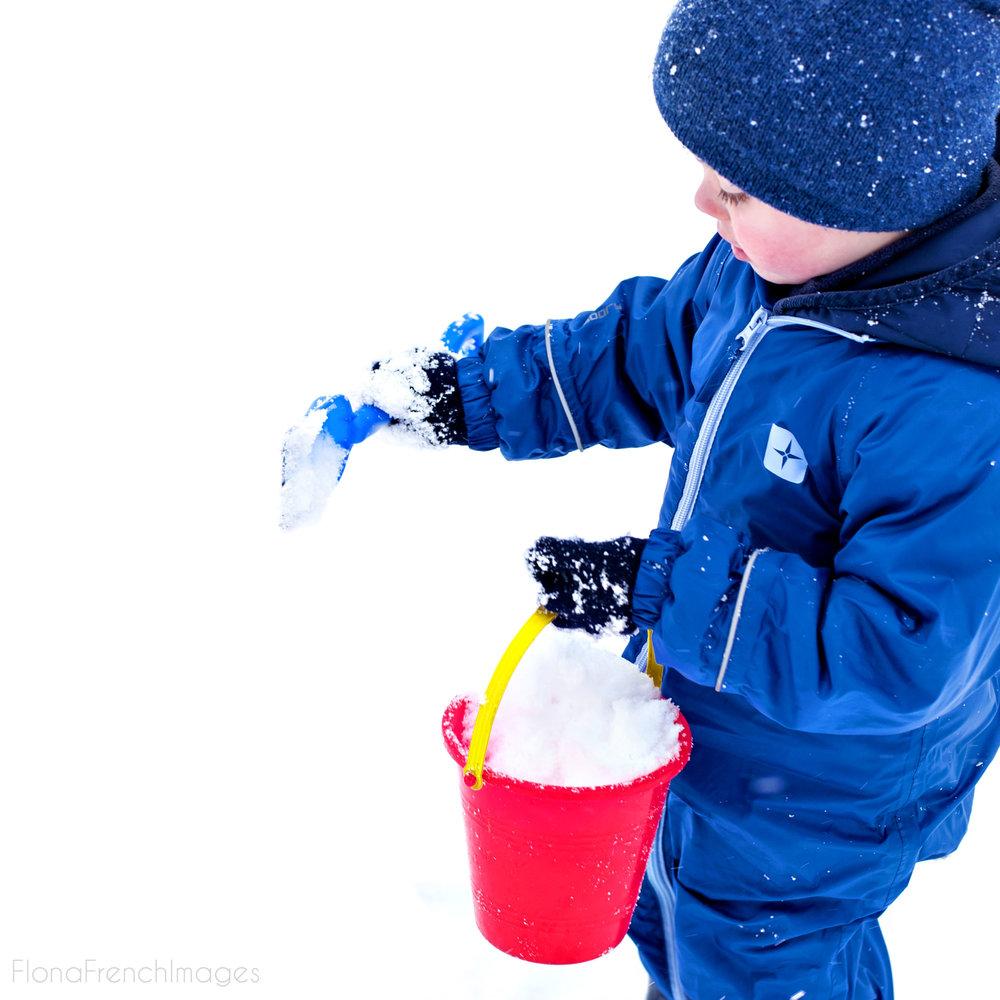 Snow2-5_crop.jpg