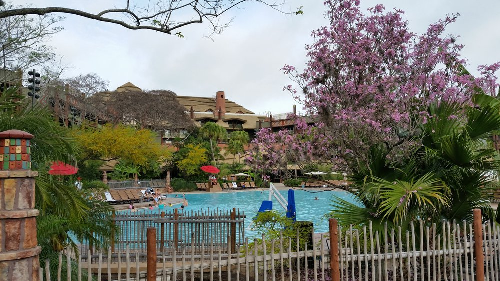 Uzima Pool, Animal Kingdom Lodge