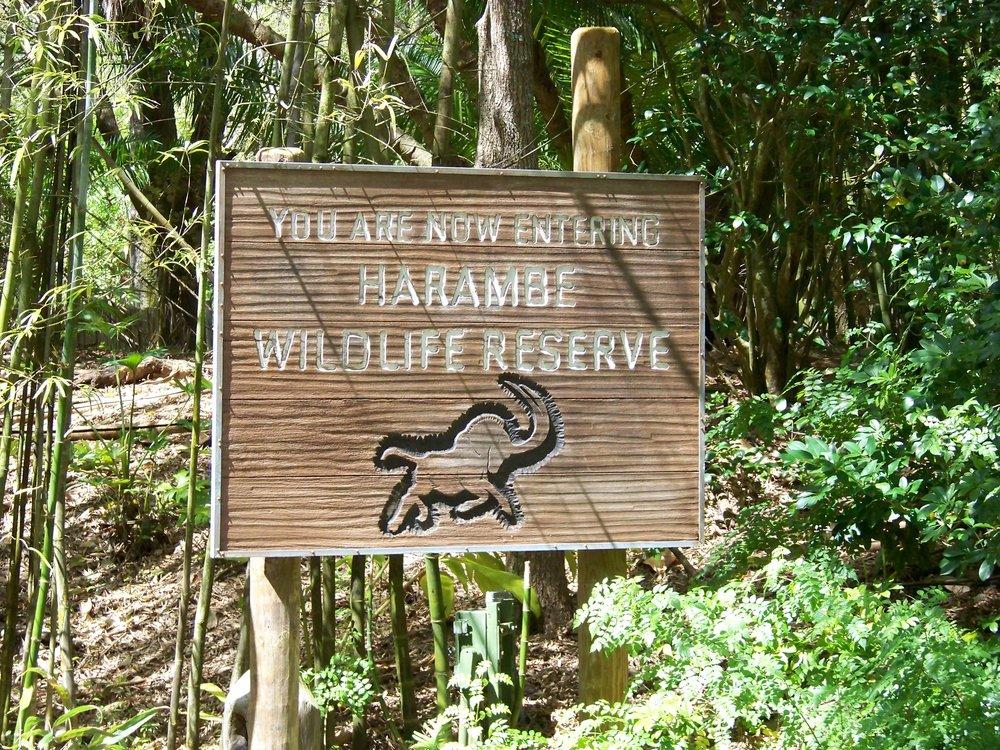 Kilimanjaro Safaris 5