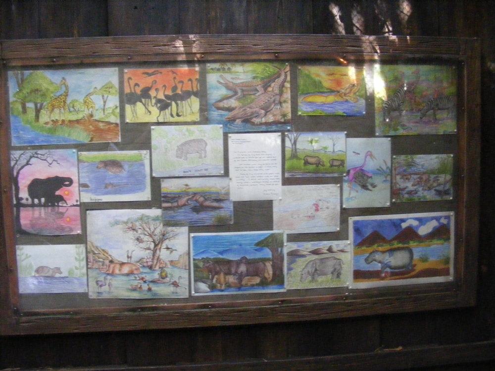 Gorilla Falls Exploration Trail 1