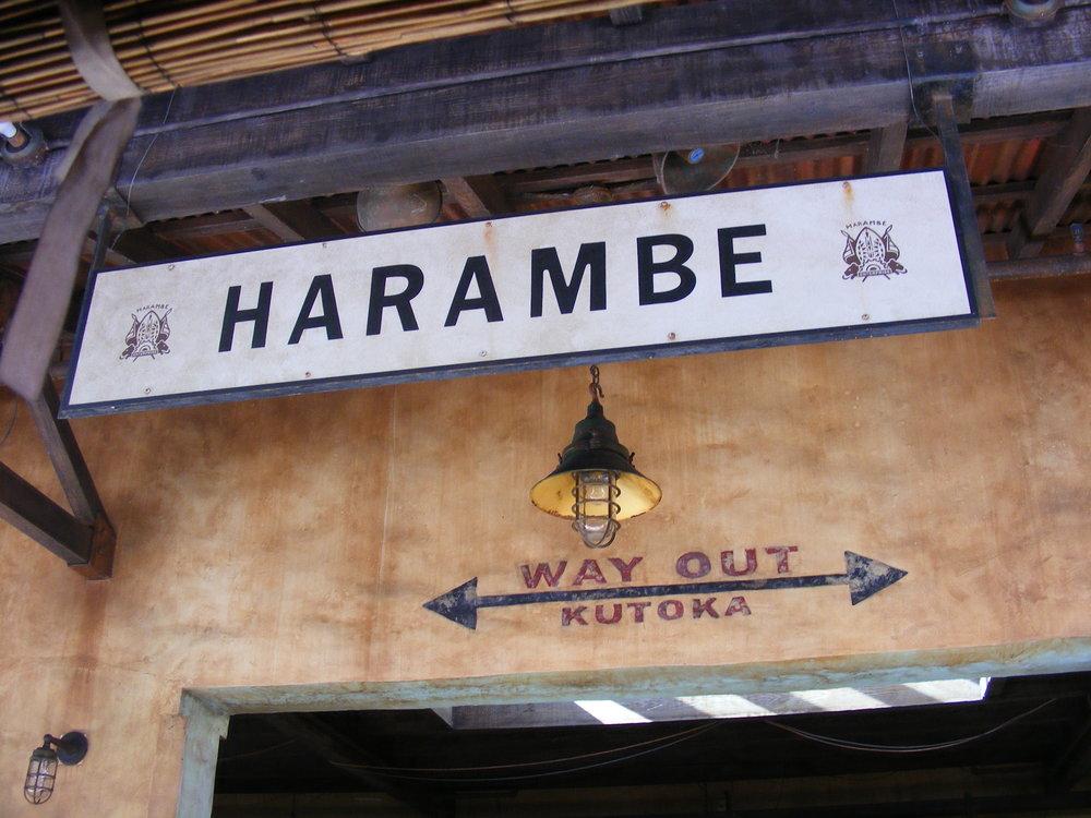 Harambe, Africa