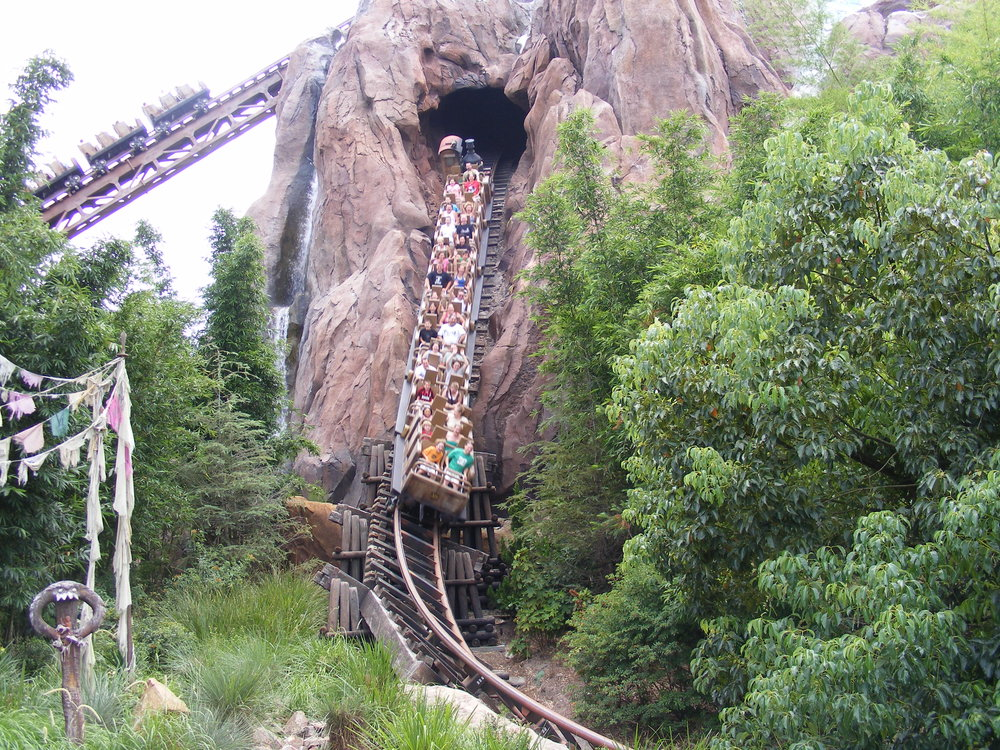 Expedition Everest 10