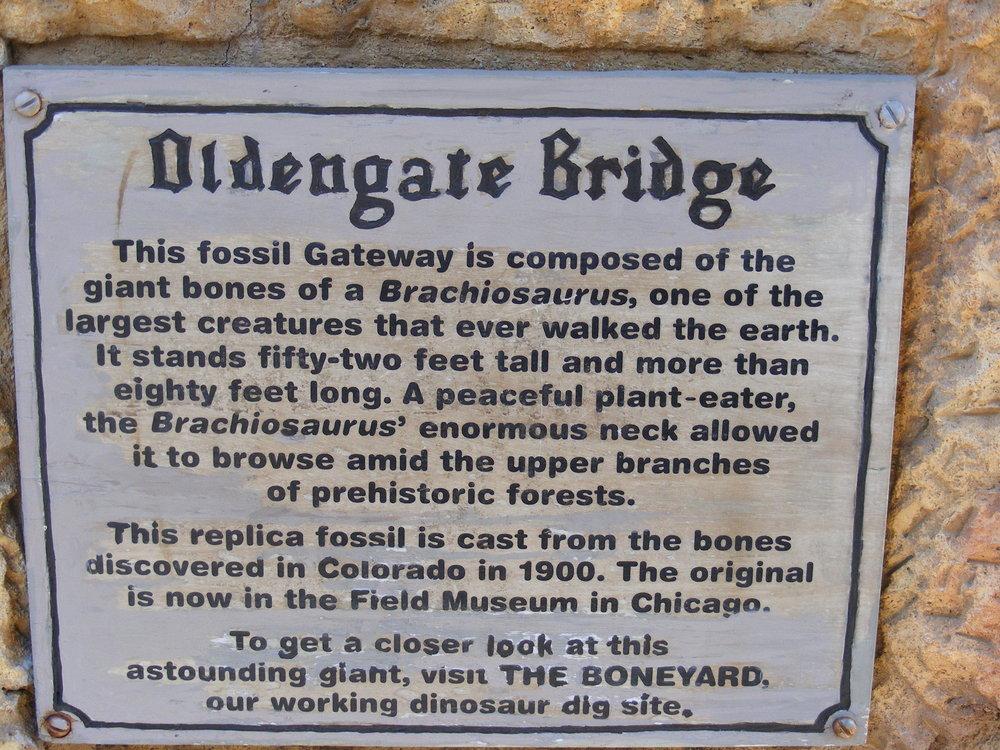 Dinoland U.S.A. 9