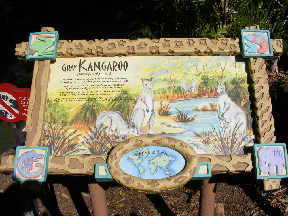 Discovery Island Trails 5