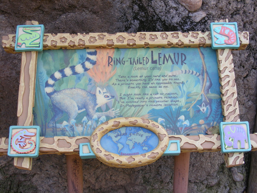 Discovery Island Trails 4