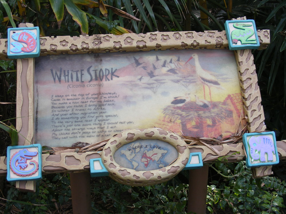 Discovery Island Trails 8