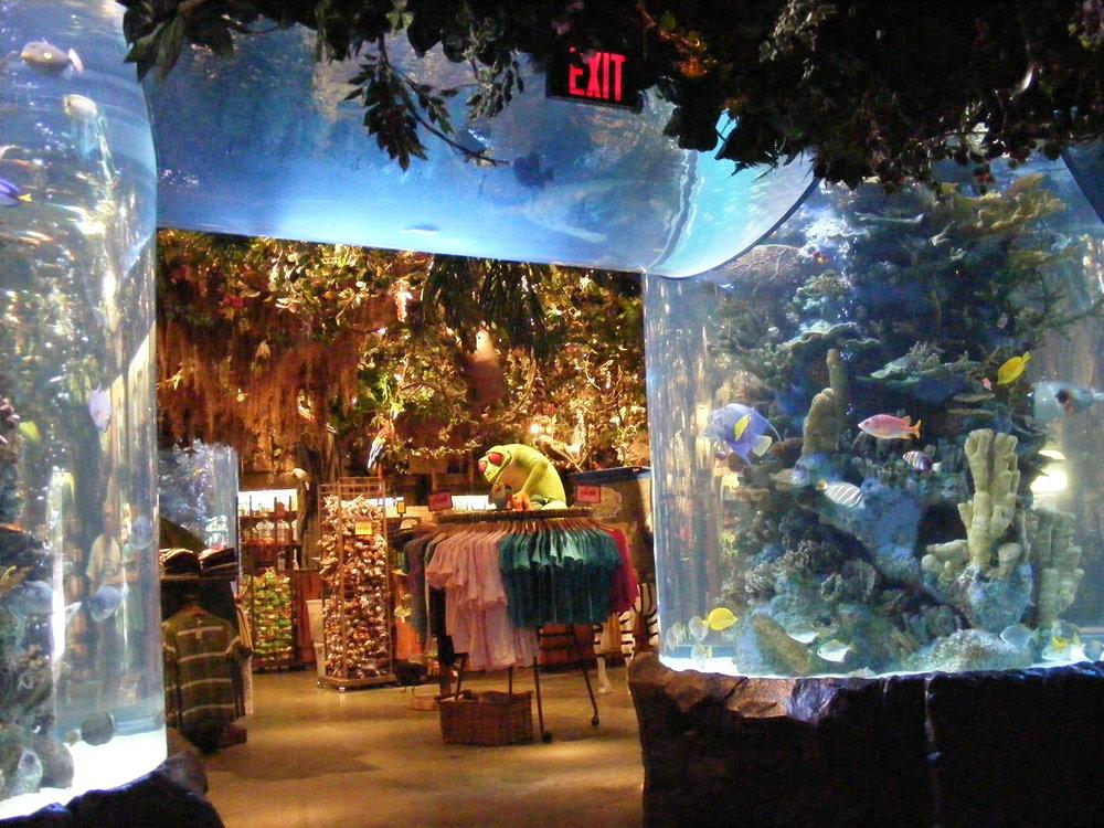 Rainforest Cafe 14.jpg