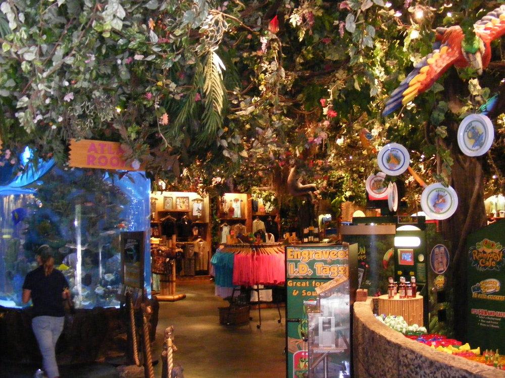 Rainforest Cafe 16.jpg