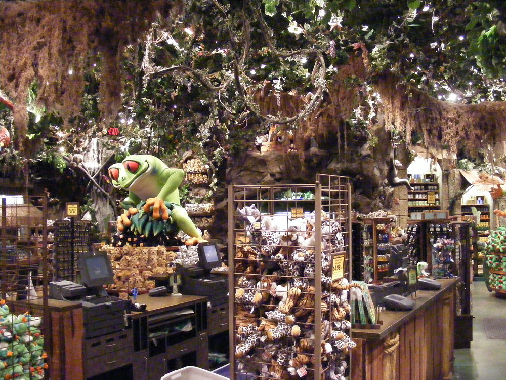 Rainforest Cafe 19.jpg