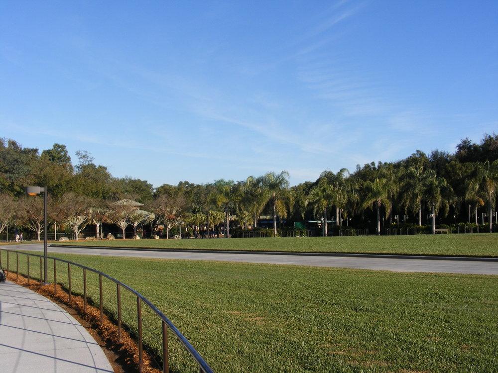 Animal Kingdom Walkway from Parking Lot