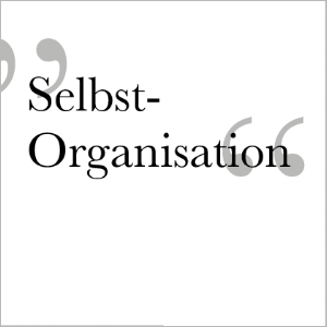 Selbst-Organisation3.png