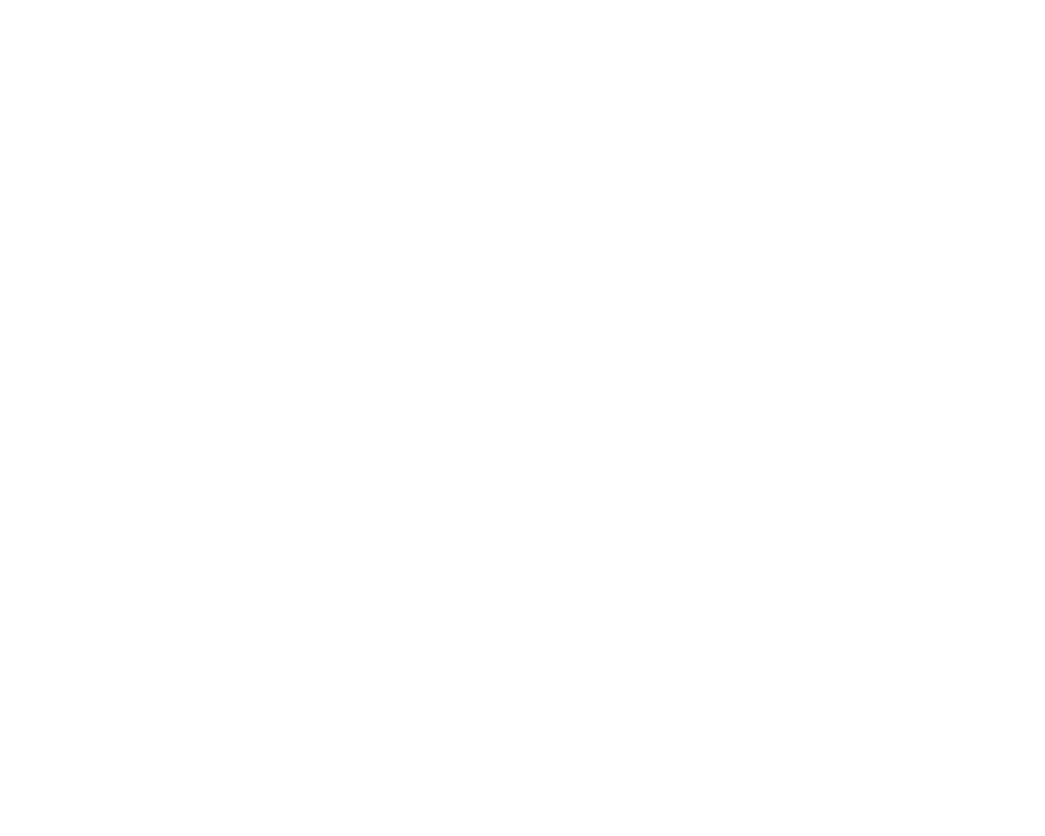 Sierra Nevada Revolution
