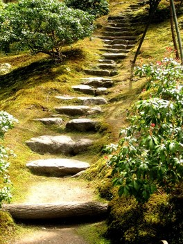 An inviting path of natural elements
