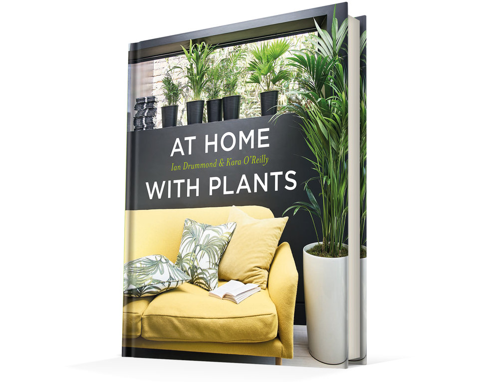At Home with Plants Comp 2.jpg