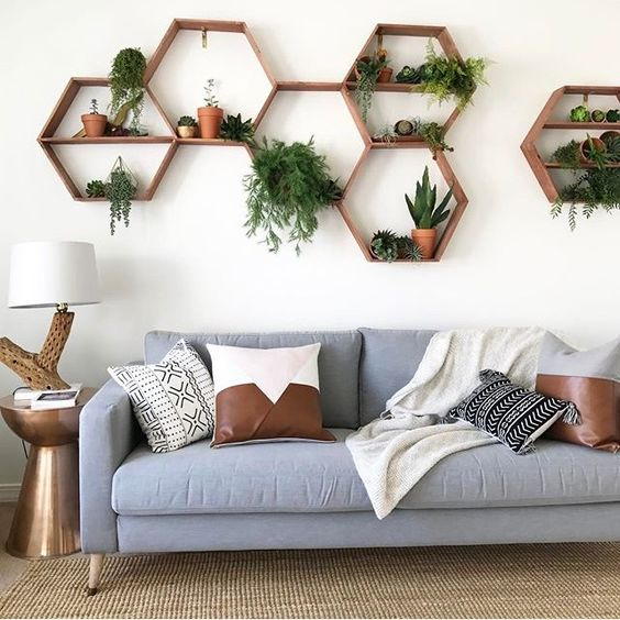 Hexagonal Shelves with plants on.jpg