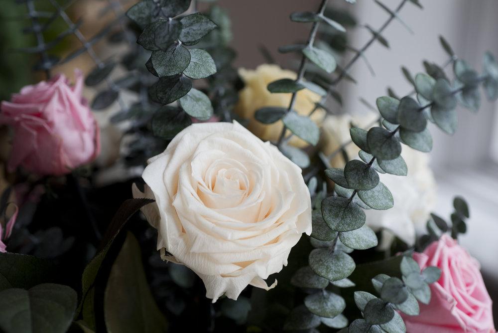 Lo-Res Hi-Res Magic Flower Company - 70.jpg
