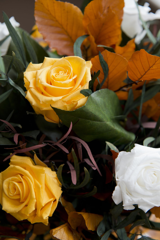 Lo-Res Hi-Res Magic Flower Company - 51.jpg