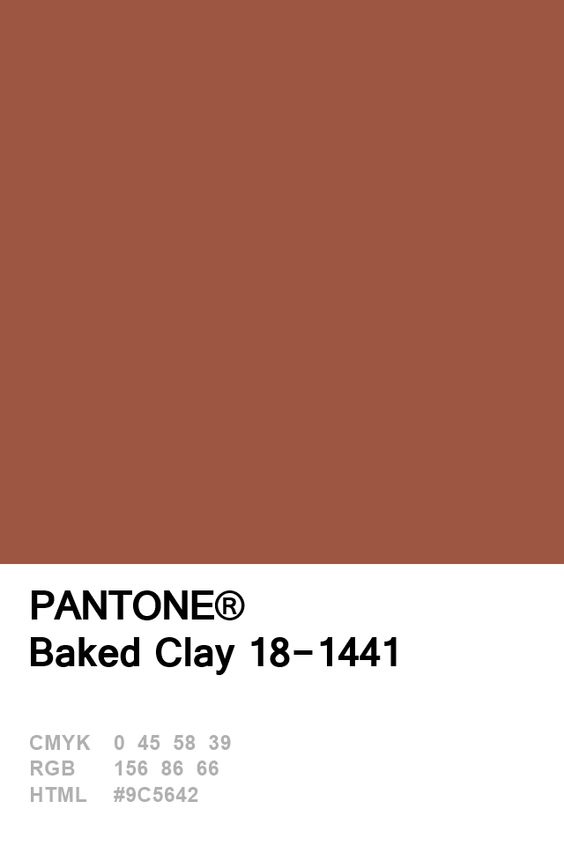 Pantone Baked Clay Colour Card.jpg