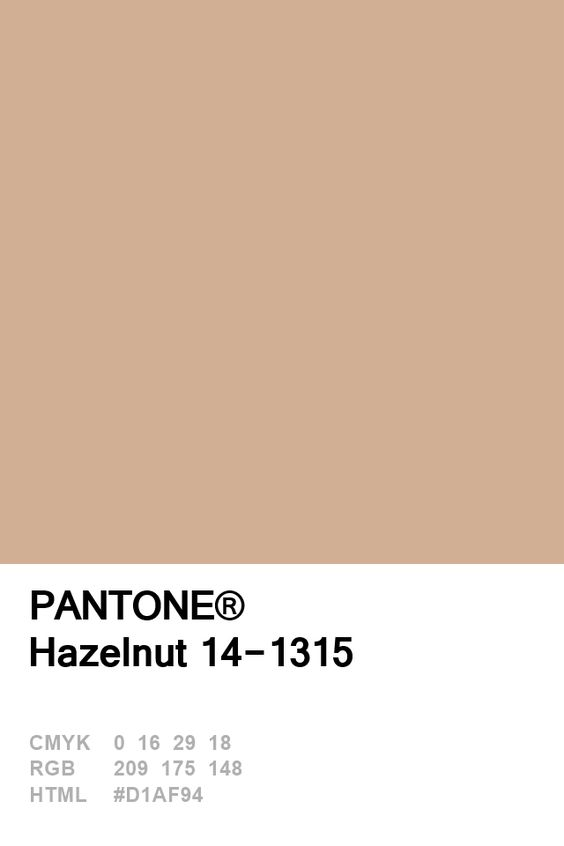 Pantone Hazelnut Colour Card.jpg