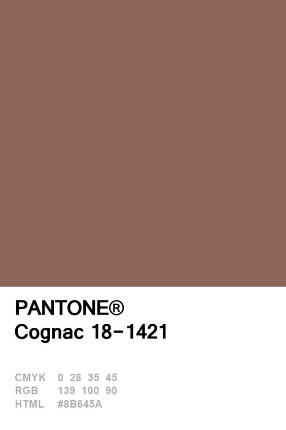Pantone Congac Colour Card.jpg