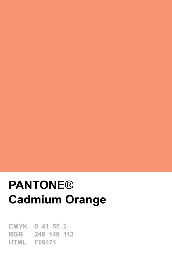 Pantone Cadmium Orange Colour Card.jpg