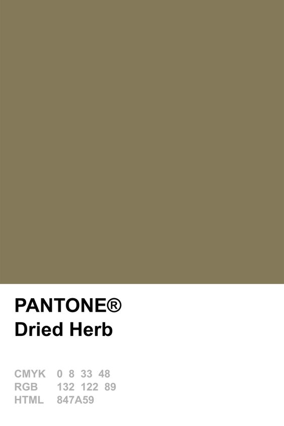 Pantone Dried Herb Colour Card.jpg
