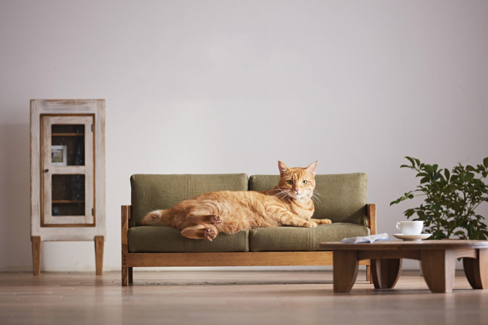 LIV for Interiors / Meet the Mini Furniture Designed for Cats