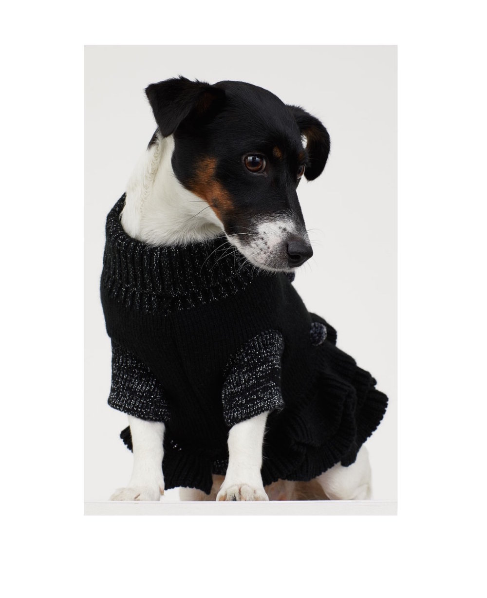 H&M Knitted Dog Dress: £9.99