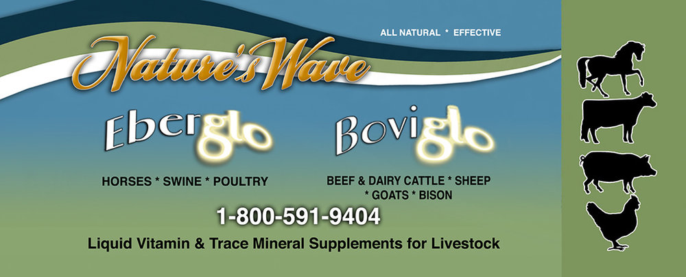 Liquid Vitamin & Mineral Supplement for Livestock