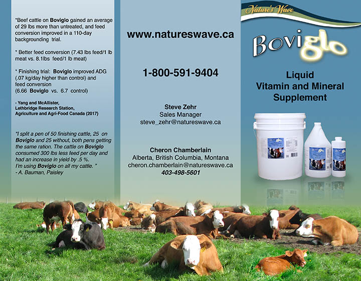 cattle nutrition — Beef — Nature's Wave