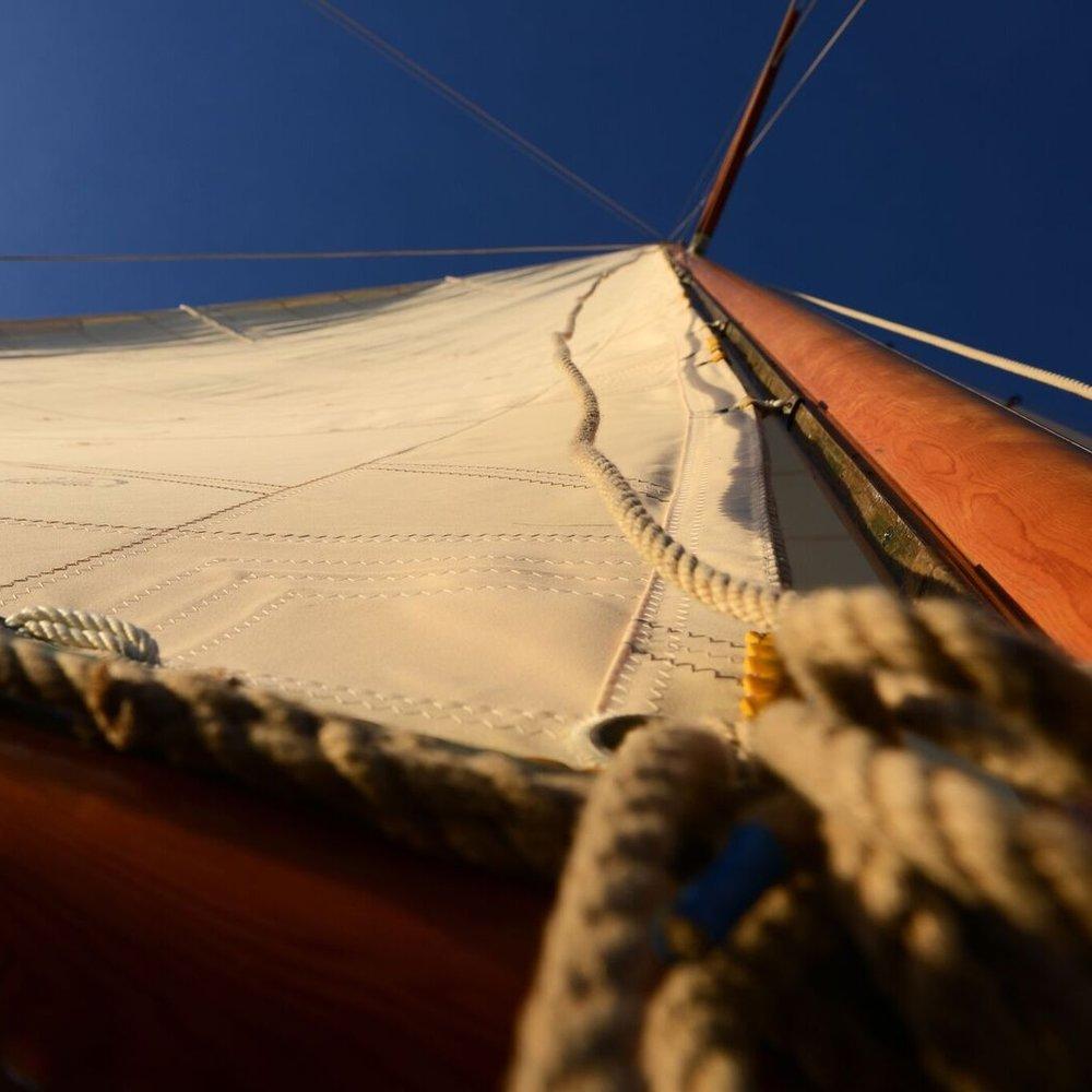 Rosemary III_sail tack.jpg