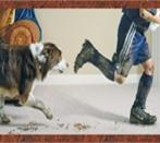 Kid & Dog.jpg