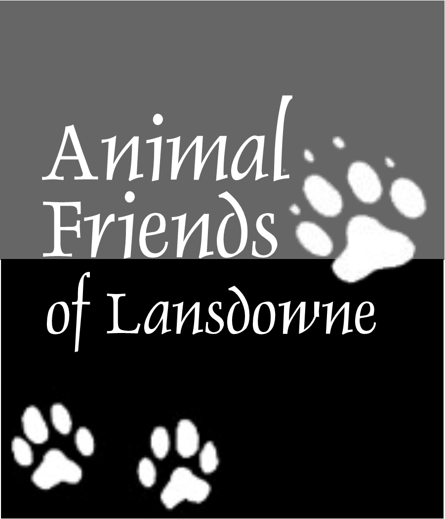 Animal Friends of Lansdowne