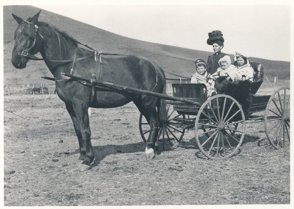 (Image: Bruce's great-grandmother in her buggy with her three children: Lavinia Jr., Norah and Sandy. This image is on the cover of  Coming Hone From Home .)