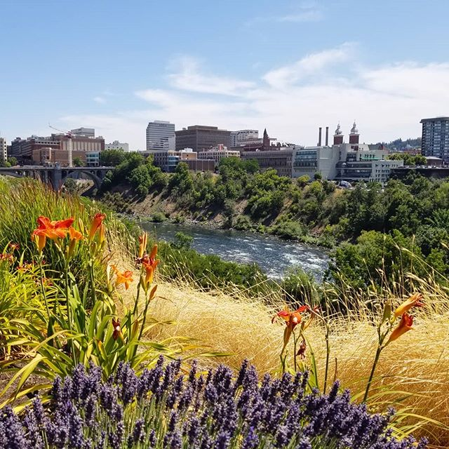 Why hello, Spokane. You seem lovely, wish I could stay for more than just lunch. . . . . #travel #travelgram #travelphotography #wanderlust #washingtonstate #lunch #patio #view #whataview #overlook #filmlife #travelbug #travelling #traveller #frequentflyer