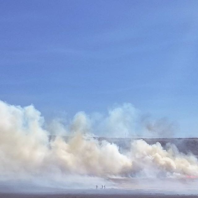 Huge respect for the firefighters and first responders accross the country that put their lives at risk to stop these fires from spreading. . . . . #wildefire #brushfire #fire #washington #washingtonstate #kittitas #columbiariver #feeltheheat #smoke #firefighter #firefighting #firstresponders #BoylstonFire