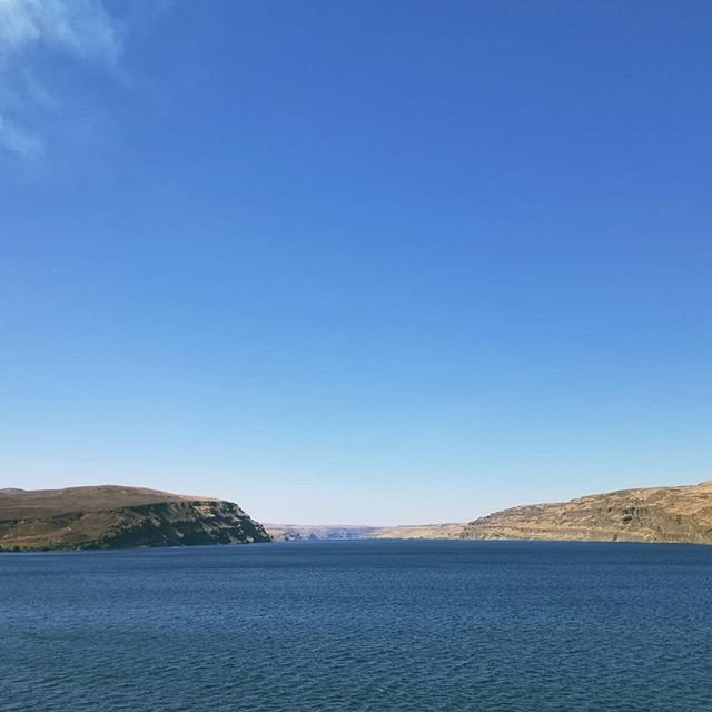 Crossing the Columbia River on the way to Seattle. It's no wonder a river this vast created the Grand Canyon . . . . #travel #travelling #travelgram #travelbug #river #columbiariver #pnw #pacificnorthwest #washington #washingtonstate #roadtrip #driving #outdoors #waterway #waterisawesome #powerofwater #water #view #whataview