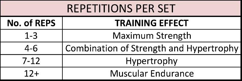 fitness-training-program-for-beginners