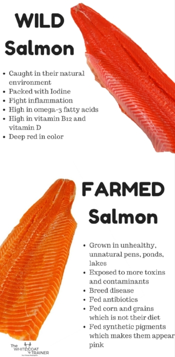 Wild-Fish-vs-Farmed-FIsh